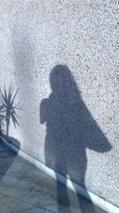 2013 Mooc Shadow